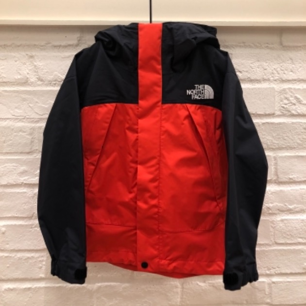 THE NORTH FACE DOTSHOT JACKET